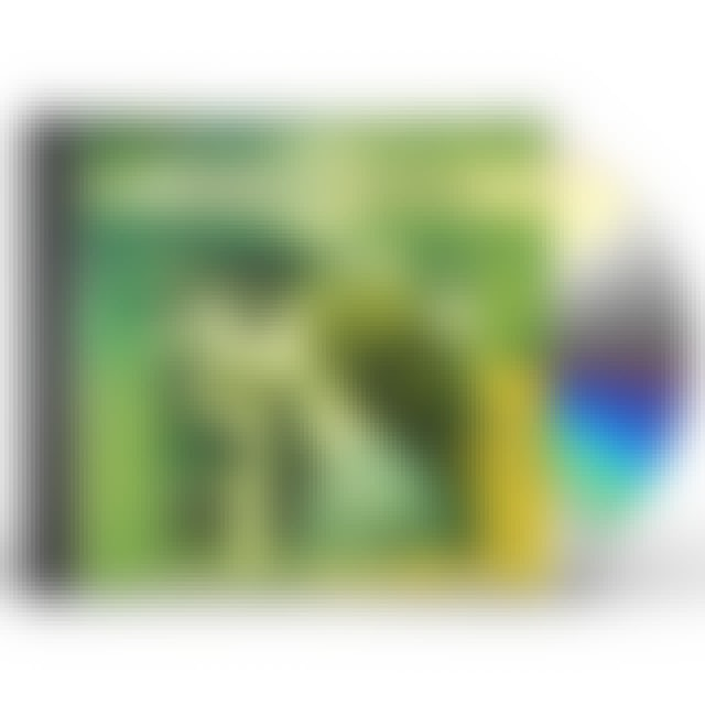 Craig Duncan IRISH LOVE SONGS: TRADITIONAL INSTRUMENTAL CD