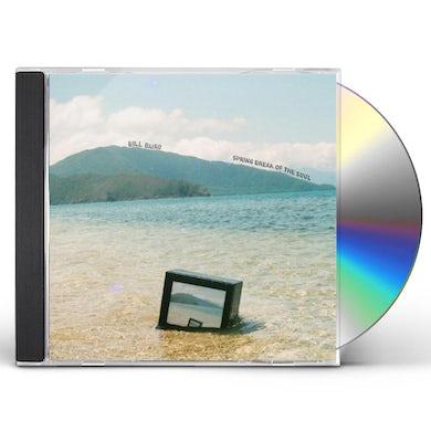 Bill Baird SPRING BREAK OF THE SOUL CD
