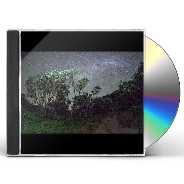 Esben & The Witch OLDER TERRORS CD
