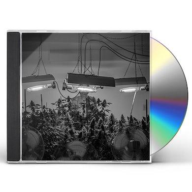 MARINOL NATION FIELD OF DREAMS CD