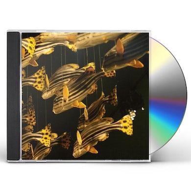 City Center CD