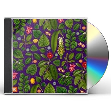Kings Kaleidoscope BECOMING WHO WE ARE CD