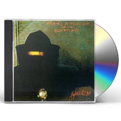 Robyn Hitchcock FEGMANIA CD