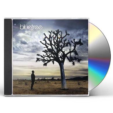 Bluetree GOD OF THIS CITY CD