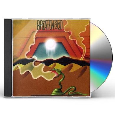 Wooden Wand BRIARWOOD CD