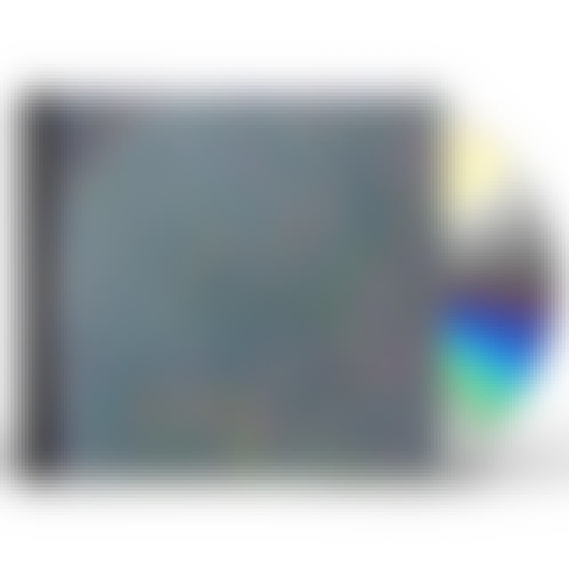 Animal Collective MERRIWEATHER POST PAVILION CD