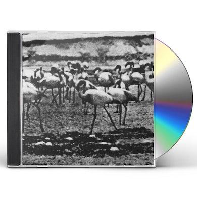 Kellarissa FLAMINGO CD