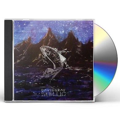 David Gray SKELLIG CD