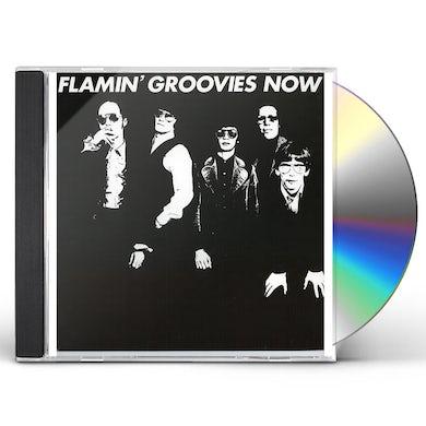 Flamin Groovies NOW CD