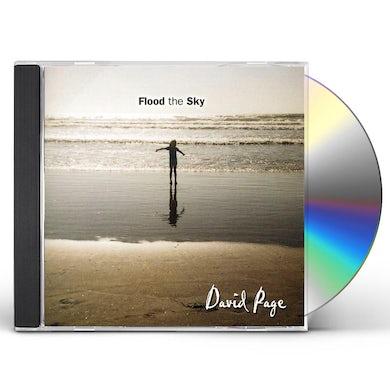 David Page FLOOD THE SKY CD