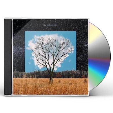 Fink BLOOM INNOCENT CD