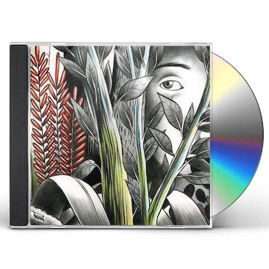 Dominique A VERS LES LUEURS CD