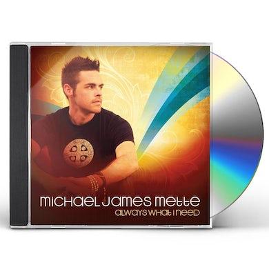 michael james mette ALWAYS WHAT I NEED CD