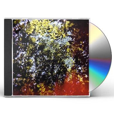 BUTTERFLY HORSE STREET CD