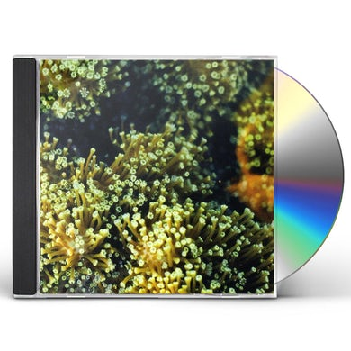 SEE BIRDS CD