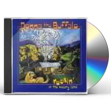 Donna The Buffalo ROCKIN IN WEARY LAND CD