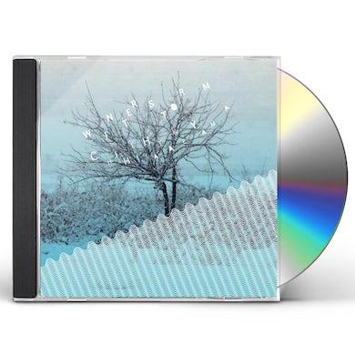 Chihei Hatakeyama WINTER STORM CD