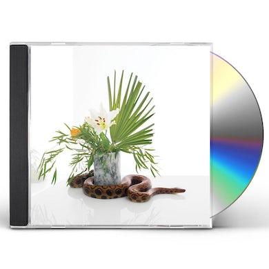 Noah Gundersen WHITE NOISE CD