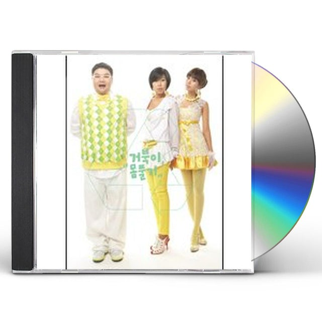 The Turtles REMAKE SINGLE ALBUM CD