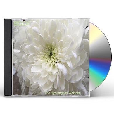 Boof HYDRANGEAS WHISPER CD