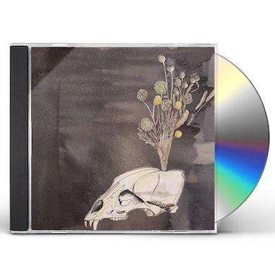 Steve Gunn SEASONAL HIRE CD