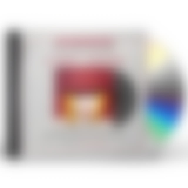 Cyndi Lauper TWELVE DEADLY CYNS CD