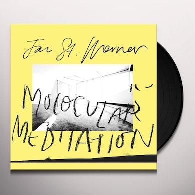 Jan St. Werner Molocular Meditation Vinyl Record