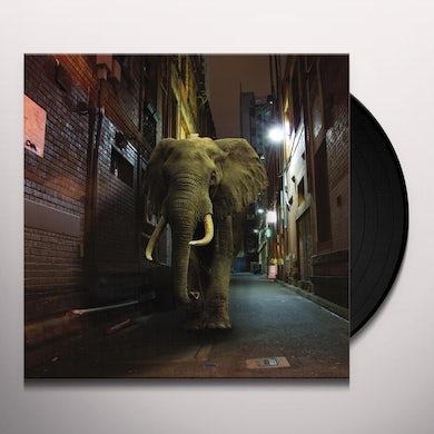 Misty Conditions D'zzzz Vinyl Record