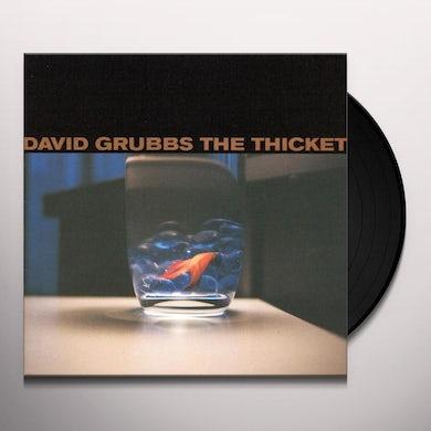 David Grubbs THICKET Vinyl Record