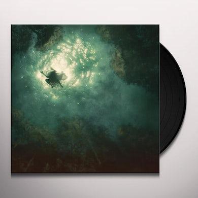 Braids COMPANION Vinyl Record
