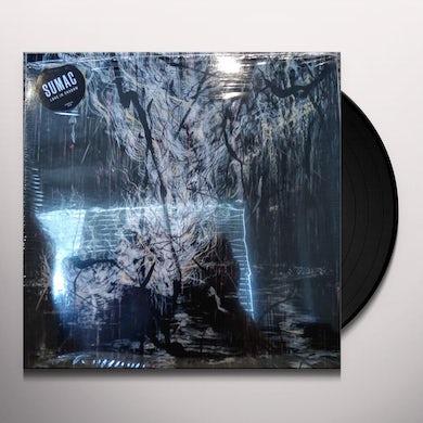 LOVE IN SHADOW Vinyl Record