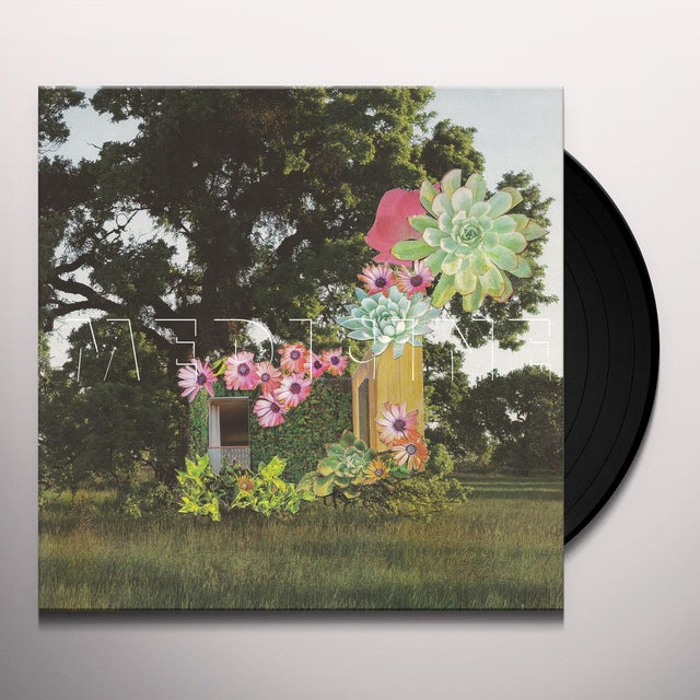 Medicine HOME EVERYWHERE Vinyl Record