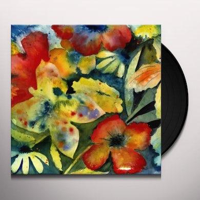 AdriAnne Lenker Songs And Instrumentals Vinyl Record