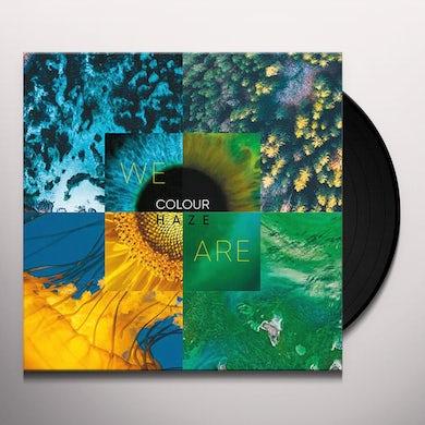 WE ARE Vinyl Record