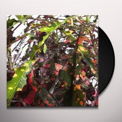 Anne Guthrie CODIAEUM VARIEGATUM Vinyl Record