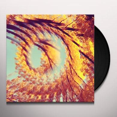 Hawk & A Hacksaw FOREST BATHING Vinyl Record