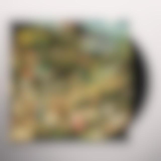 FLEET FOXES/SUN GIANT EP Vinyl Record - UK Release
