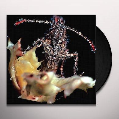 Gang Gang Dance EYE CONTACT Vinyl Record