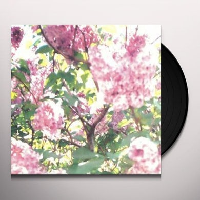 Actual Water PAISLEY ORCHARD Vinyl Record