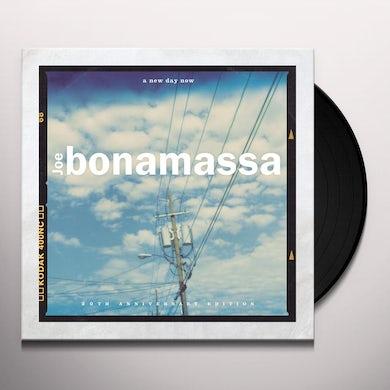 Joe Bonamassa A New Day Now (2 LP) Vinyl Record