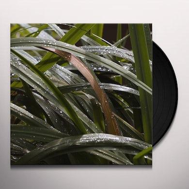 Detroit Swindle LIFE BEHIND THINGS Vinyl Record