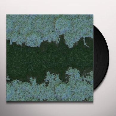 Shahrokh Dini KUWASAKI / YUMAHA Vinyl Record