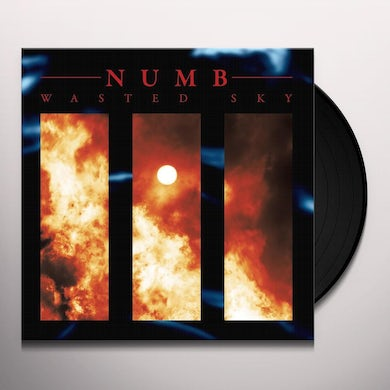 Numb WASTED SKY Vinyl Record