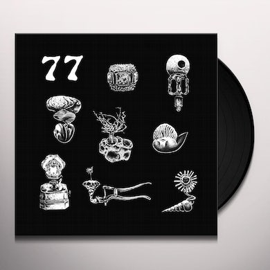 Hypnobirds 77: A BRIEF LANDING ON THE EARTH'S SURFACE Vinyl Record