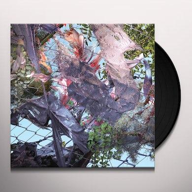 Kingdom TEARS IN THE CLUB Vinyl Record