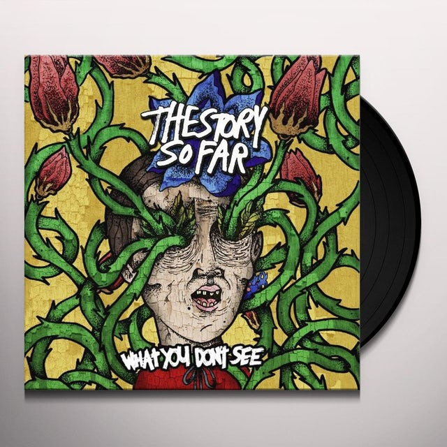 The Story So Far WHAT YOU DON'T SEE Vinyl Record