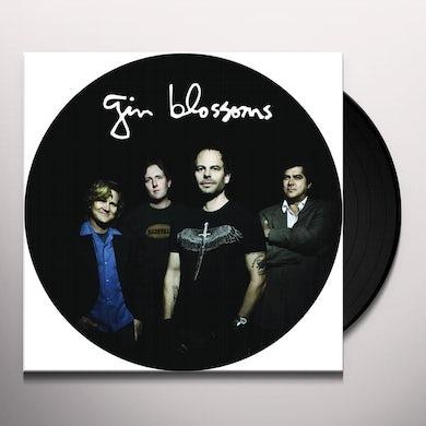 Live In Concert   Picture Disc Vinyl Vinyl Record