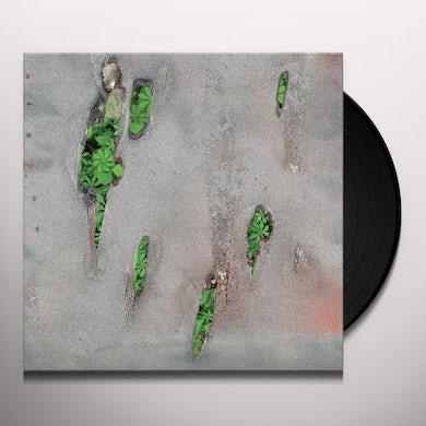 Koreless AGOR Vinyl Record