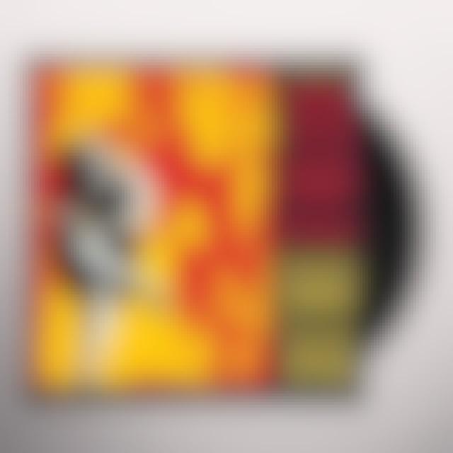 Guns N' Roses USE YOUR ILLUSION 1 Vinyl Record