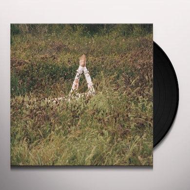 Verite NEW SKIN Vinyl Record